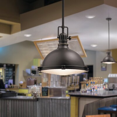 Fresnel 1-Light Pendant Finish: Olde Bronze