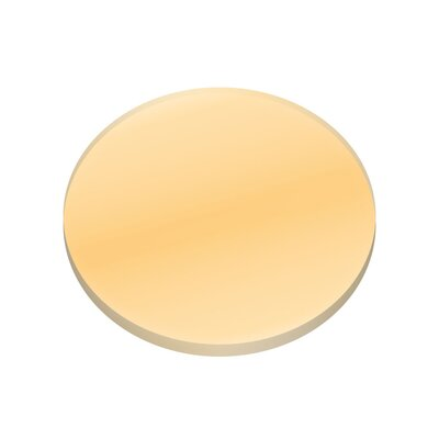 Amber Lense Finish: Amber, Size: 0.25 H x 2.5 W x 2.5 D