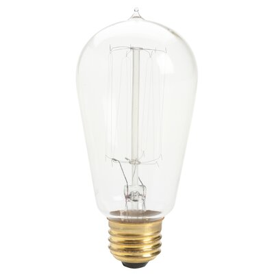 Antique Incandescent Light Bulb (Set of 6)