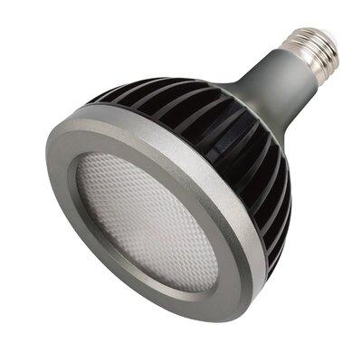 Landscape LED 13W Light Bulb (Set of 2) Bulb Color Temperature: 2700K