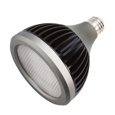 Landscape LED 17 W 40 Degree Beam Spread LED Light Bulb (Set of 2) Bulb Color Temperature: 4200K