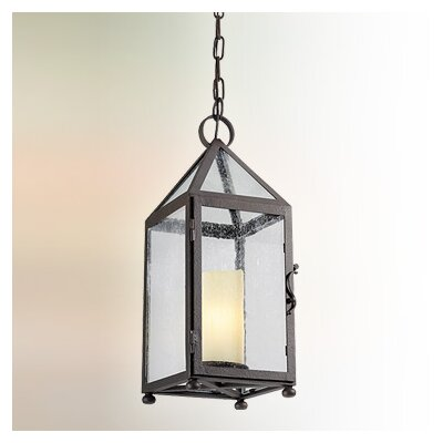 Hidden Hill 1-Light Foyer Pendant
