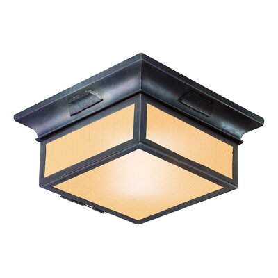 Newton 2-Light Flush Mount Bulb Type: 13W fluorescent, Shade Type: Amber Mist