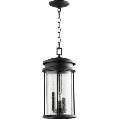 Southold 3-Light Foyer Pendant Finish: Noir