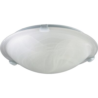 Ceiling Mount Size: 4.75 H x 16 W, Finish: White