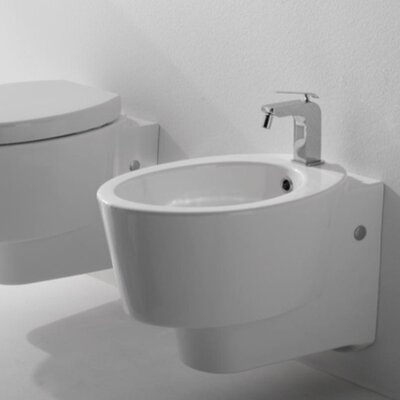 Wish Wall Mount Bidet Finish: White