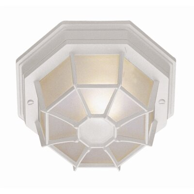 Outdoor 1-Light Flush Mount Finish: White, Size: 4 H x 9 W