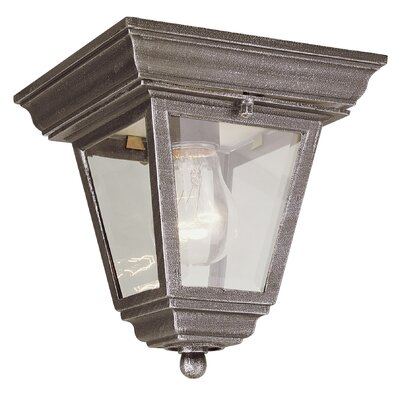 Outdoor 1-Light Flush Mount Finish: Rust