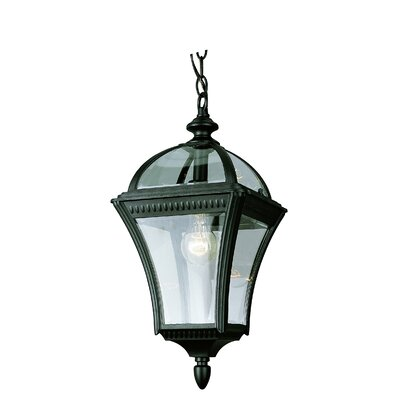 Elettra 1-Light Outdoor Hanging Lantern