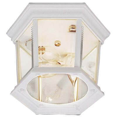 Outdoor 3-Light Flush Mount Finish: White