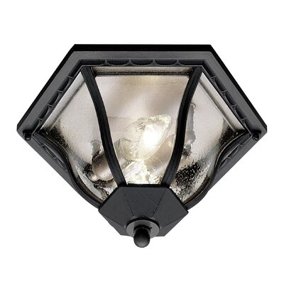 Outdoor 1-Light Flush Mount Finish: Black Gold