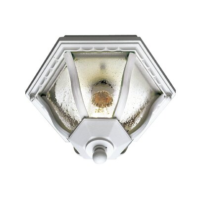Outdoor 1-Light Flush Mount Finish: White