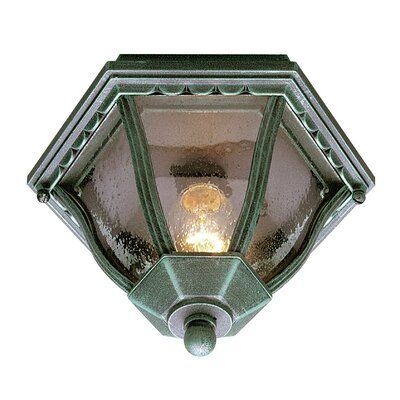 Outdoor 2-Light Flush Mount Finish: Verde Green