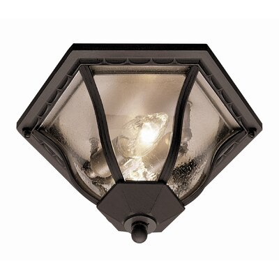 Outdoor 2-Light Flush Mount Finish: Black