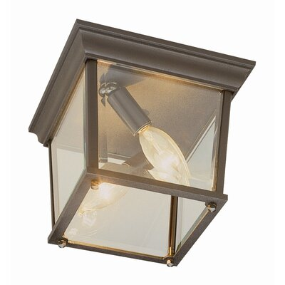 Outdoor 2-Light Flush Mount Finish: Rust