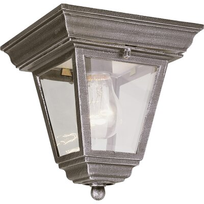 Outdoor 1-Light Flush Mount Finish: Swedish Iron