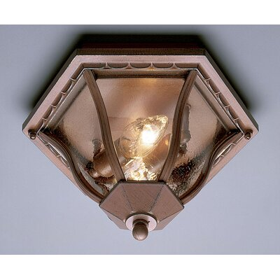Outdoor 2-Light Flush Mount