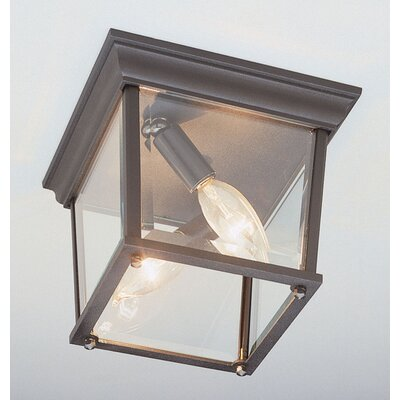 Outdoor 2-Light Flush Mount Finish: Black Gold