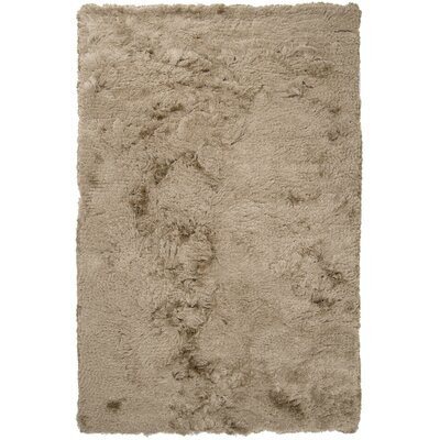 Whisper Gray Solid Area Rug Rug Size: Rectangle 5 x 8