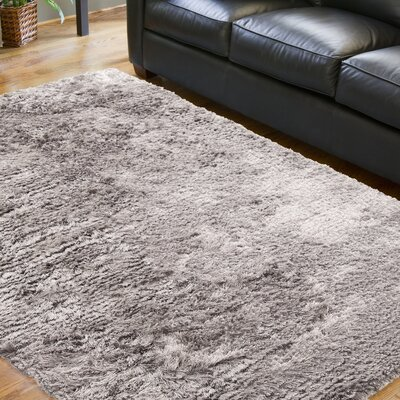 Whisper Gray Area Rug Rug Size: 2 x 3