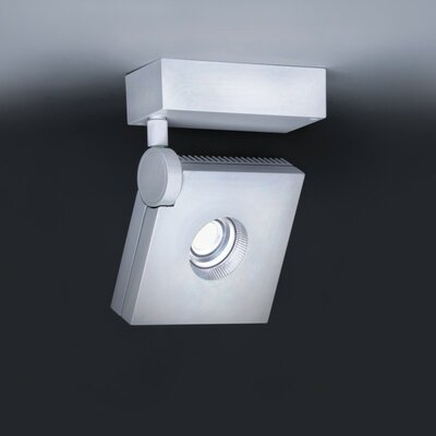 Bridge 1-Light Semi Flush Mount