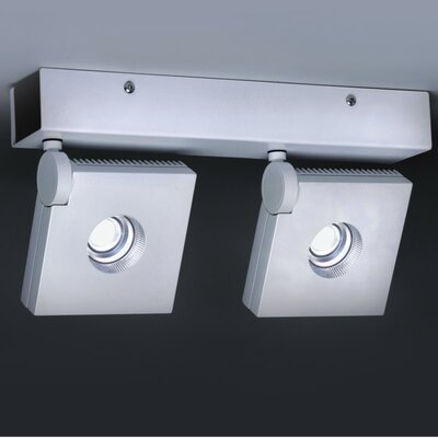 Bridge 2-Light LED Semi Flush Mount