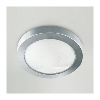 Mini Ai-Pi 1-Light Flush Mount Finish: Stainless Steel