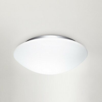 Eos Flush Mount Size: 5.5