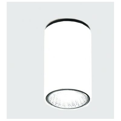 Kronn 1-Light Flush Mount Finish / Size: White/ 4.5 H x 2.75 Dia