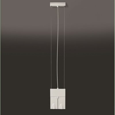 Bessons 2-Light LED Mini Pendant