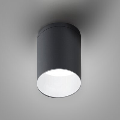 Kone Directional and Spotlight Fixture Finish: Titanium/White