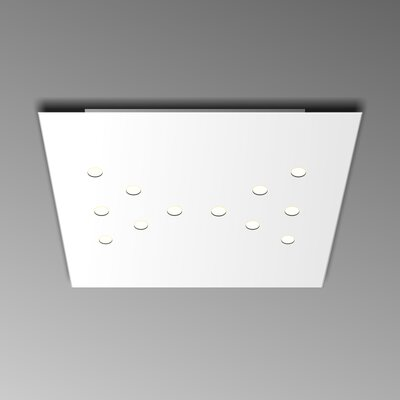 12-Light Flush Mount Fixture Finish: White