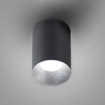 Kone Directional and Spotlight Fixture Finish: Titanium/Silver Leaf