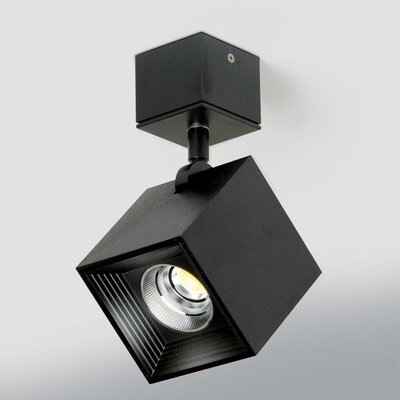 Ona 1-Light Directional and Spotlight Fixture Finish: Black