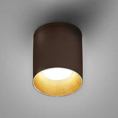 Kone Directional and Spotlight Fixture Finish: Chocolate/Gold Leaf