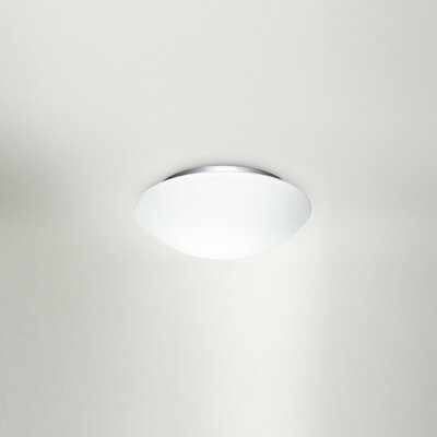 Eos Flush Mount Size: 4