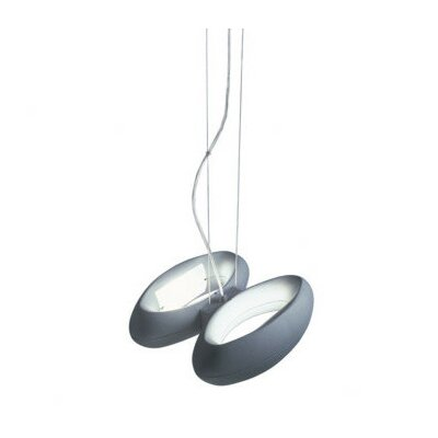Loop 2-Light Pendant in Metallic Gray