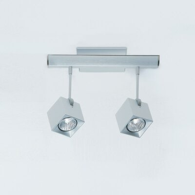 Dau Spot 2-Light Flush Mount