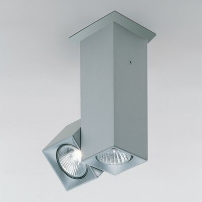Dau Spot 2-Light Flush Mount with Rotating Spot Light