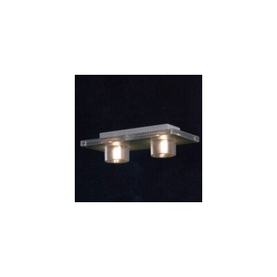 Maia 2-Light Semi Flush Mount