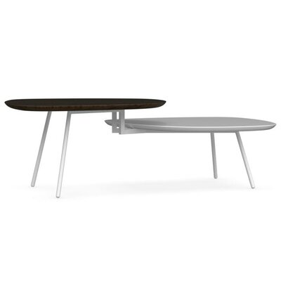 Tweet Coffee Table with Double Top Top Color: Smoke / Matt Optic White