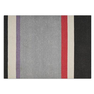 Follower hand-woven Gray area Rug