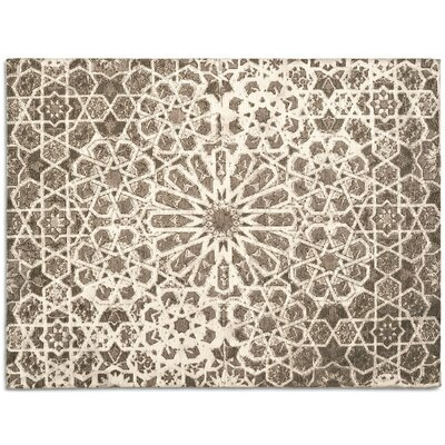 Arabia Brown Area Rug Rug Size: 57 x 711