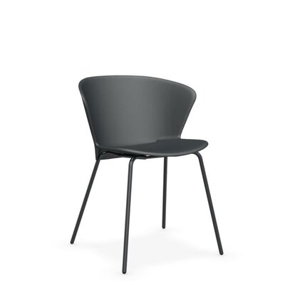 Bahia Side Chair Finish: Gray