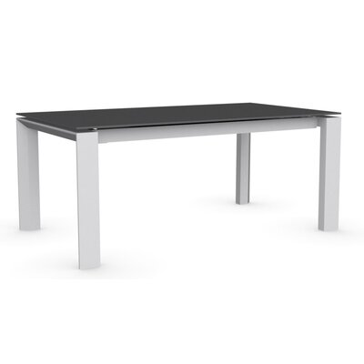 Omnia Extendable Dining Table Base Finish: Matte Optic White, Top Finish: Stone Grey