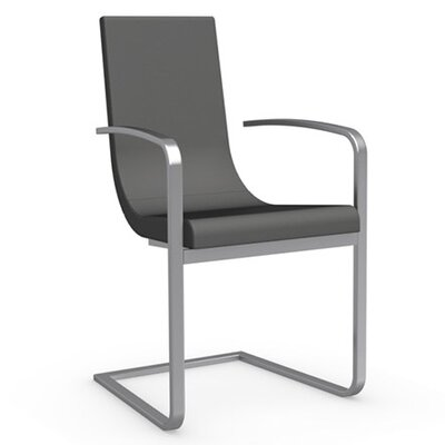 Cruiser Cantilever Arm Chair Frame Finish: Satin Finished Steel, Upholstery: Leather - Taupe