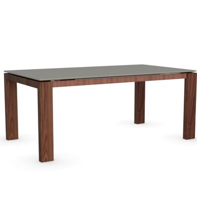 Sigma Glass Extendable Table Frame Finish Walnut Color Frosted Taupe Leg Finish Frosted Taupe