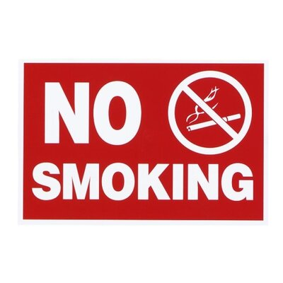 Economy No Smoking Wall Sign, Plastic, 12 x 8, Red