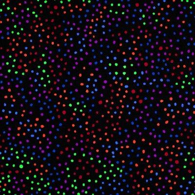 Dots Aglow� 39 x 39 Carpet Tile in Flourescent (Set of 25)