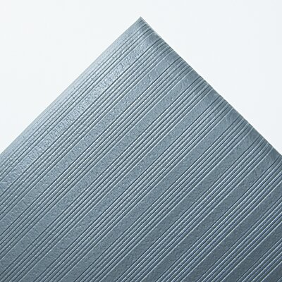 Ribbed Antifatigue Doormat Mat Size: Rectangle 3x5